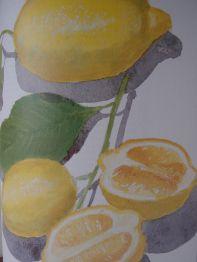 Illustration: Sophie MacCarthy taken from Italian Food by Elizabeth David (The Folio Society)